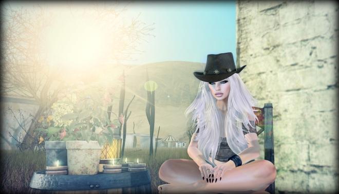 Cowboy_1.0