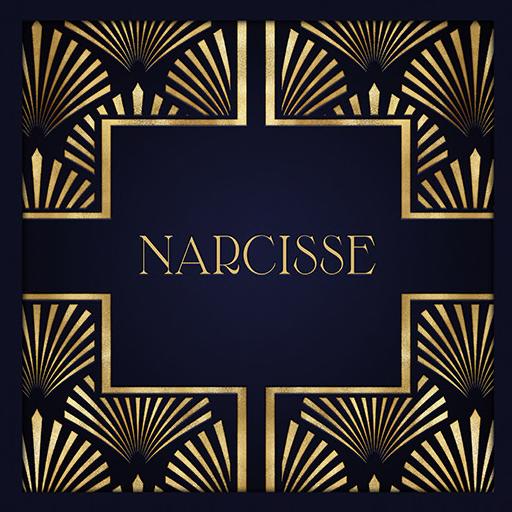 narcisse_logo_2 512