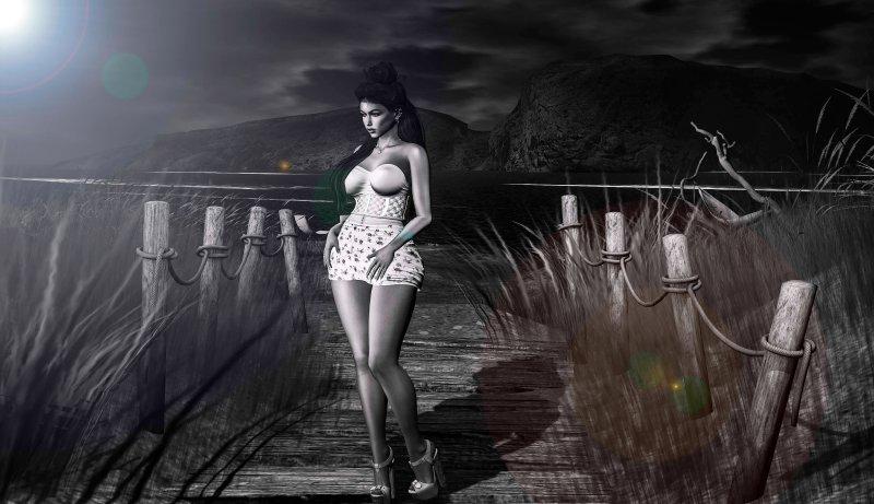 walk in the moonlight8693613175863927533..jpg
