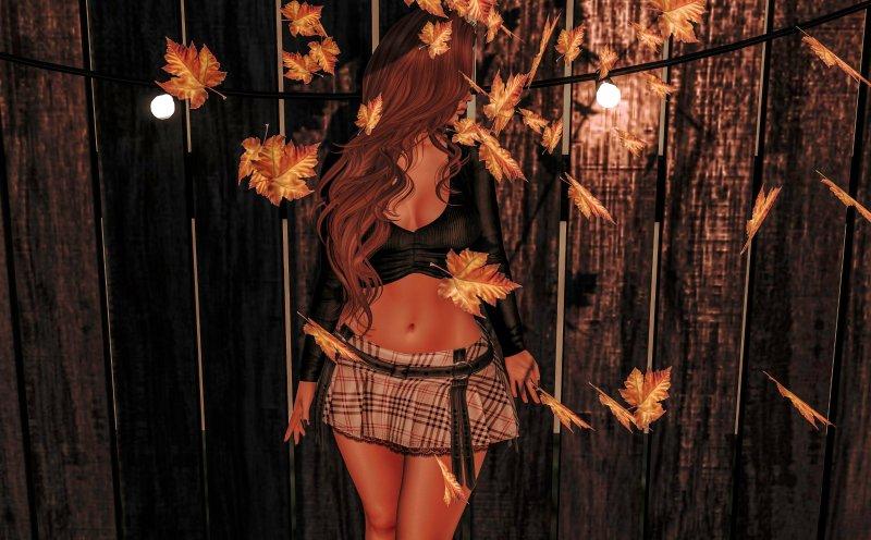 autumn2539756013690544018.jpg