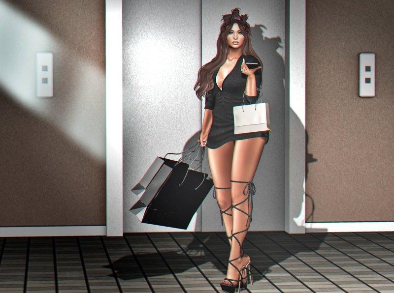 shopping_finalllllll772271152235660023.jpg